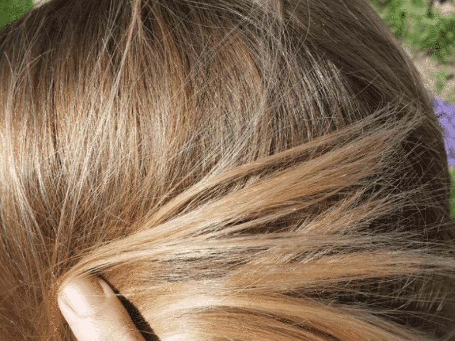 mêche de cheveux couleur claire à la pointe